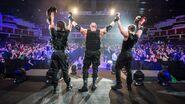 WWE World Tour 2017 - Cardiff 19