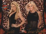 2004 WWE Divas 2005 (Fleer) Sable & Torrie Wilson (No.64)