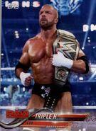 2018 WWE Wrestling Cards (Topps) Triple H 94