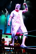 CMLL Martes Arena Mexico 7-31-18 9