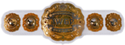 IWGP Intercontinental Championship Belt