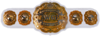 IWGP Intercontinental Championship Belt