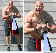 The Rock (2010)