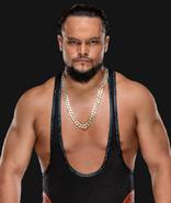WWEBoDallas