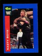 1991 WWF Classic Superstars Cards Nasty Boys 23