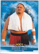 2017 WWE Undisputed Wrestling Cards (Topps) Samoa Joe 53