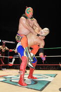CMLL Martes Arena Mexico (April 26, 2016) 7