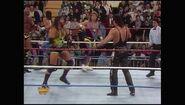 Survivor Series 1993.00003