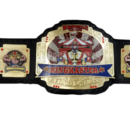 WC Ringmaster Championship