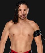WWEShinsukeNakamura