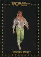 1991 WCW Collectible Trading Cards (Championship Marketing) Bobby Eaton 74
