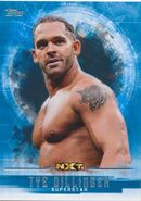 2017 WWE Undisputed Wrestling Cards (Topps) Tye Dillinger 59