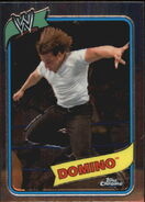 2008 WWE Heritage III Chrome Trading Cards Domino 16