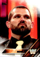 2016 WWE (Topps) Then, Now, Forever Jamie Noble 174