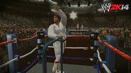 WWE 2K14 Screenshot.16