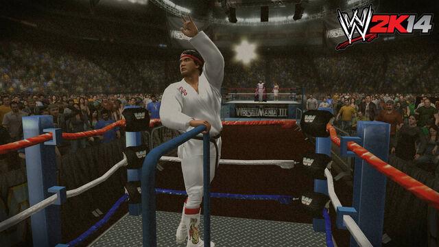 ファイル:WWE 2K14 Screenshot.16.jpg