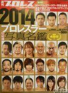 Weekly Pro Wrestling 1714