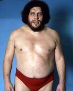 Andre the Giant14