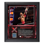 Shinsuke Nakamura Extreme Rules 2018 15 x 17 Framed Plaque w Ring Canvas