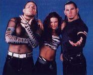 The Hardy Boyz 3