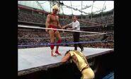 WrestleMania VIII.00026
