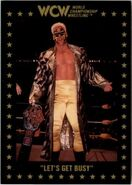 1991 WCW Collectible Trading Cards (Championship Marketing) Sting 86
