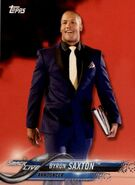2018 WWE Wrestling Cards (Topps) Byron Saxton 19