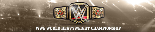 WWE-WorldHeavyweight banner