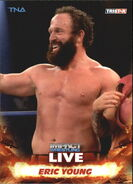 2013 TNA Impact Wrestling Live Trading Cards (Tristar) Eric Young 37