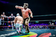 CMLL Domingos Arena Mexico (January 26, 2020) 6