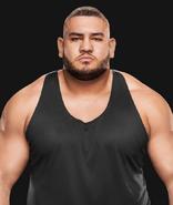 WWEAOPRezar