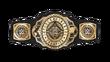 WWE Intercontinental Title Nov2019