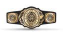 WWE Intercontinental Title Nov2019