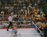 1.9.88 WWF Superstars.00015