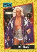 1991 WCW (Impel) Ric Flair 44