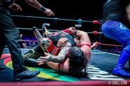 CMLL Domingos Arena Mexico (December 22, 2019) 22