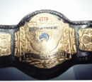 NWA Wildside Junior Heavyweight Championship
