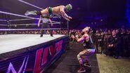 WWE World Tour 2017 - Minehead 12