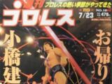 Weekly Pro Wrestling No. 1099
