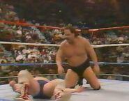 February 6, 1988 WWF Superstars of Wrestling.00009