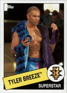 2015 WWE Heritage Wrestling Cards (Topps) Tyler Breeze 110