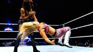 WrestleMania Revenge Tour 2013 - Birmingham.7