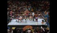 Survivor Series 1989.00010