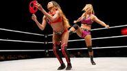 WrestleMania Revenge Tour 2015 - Budapest.8