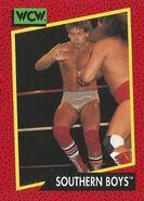 1991 WCW (Impel) Southern Boys 130