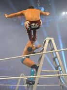 Money in the Bank 2011.3