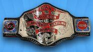 NWA Television Championship