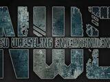 New Wrestling Entertainment