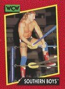 1991 WCW (Impel) Southern Boys 132