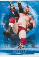 2017 WWE Undisputed Wrestling Cards (Topps) Sheamus 35